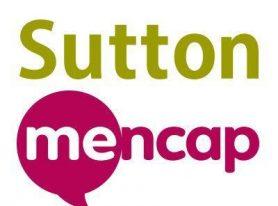 Cage Cricket Fun with Sutton Mencap